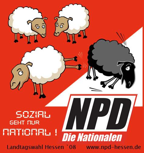 NPD_moutons