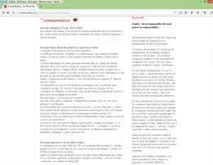 Capture d'écran des commentaires publiés le 31 mai 2014 sous un article mis en ligne le même jour (http://www.lesobservateurs.ch/2014/05/31/viviane-reding/).